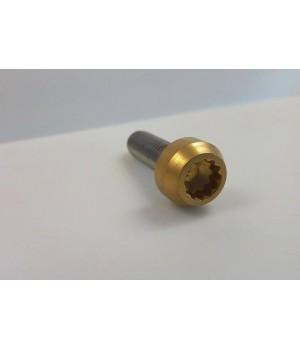 šroub M7x24 mm pro BBS Speedline nerez nerezové - zlaté zlato gold